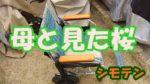 修復したオンボロ車椅子で母と見た桜