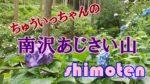【観光スポット】あきる野「南沢あじさい山」ちゅういっちゃんが咲かせた一万本